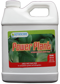 Power Plant. 1 Quart