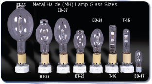 Metal Halide (MH) Lamp Glass Sizes