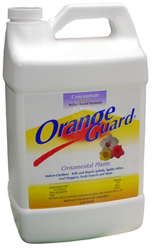 Orange Guard Ornamental Plants. 1 Gallon