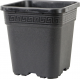 Vega Black Square Pot 1 gal