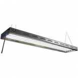 Sun Blaze 24 - T5 HO Fluorescent Light Fixture