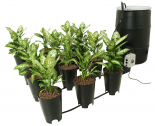 hf-GFO7KT Grow Flow Ebb & Flow 12-site 2 Gal Complete Kit
