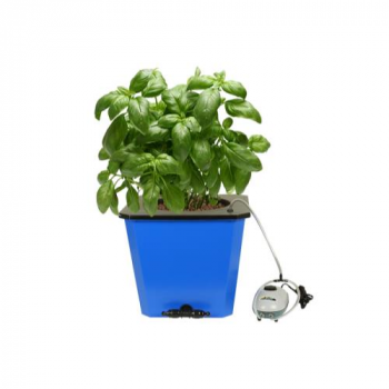 Flo-n-Gro Big Momma Bubbler Bucket - 6.6 Gallon