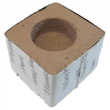 Oasis Easy Plant Block - 4 in x 4 in x 3 in - 2.375 in Hole Diameter (108/Cs)