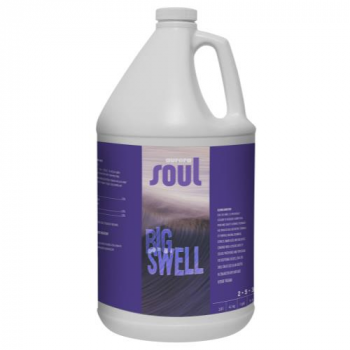 Soul Big Swell Gallon (4/Cs)