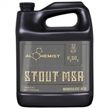 Alchemist Stout MSA Gallon (4/Cs)