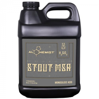 Alchemist Stout MSA 2.5 Gallon (2/Cs)