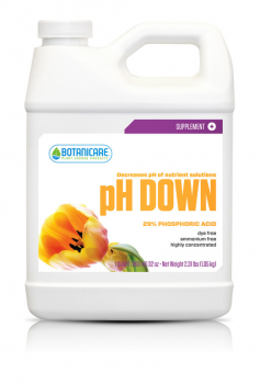 PH Down Qt, case of 12 (Special Order)