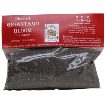 Gigantamo Bloom - 20 lb