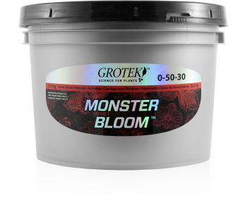 Monster Bloom, 2.5 kg