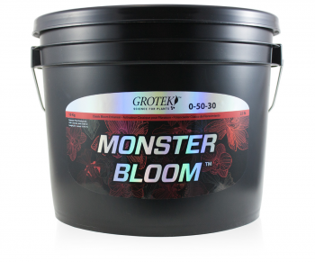 Monster Bloom, 10 kg