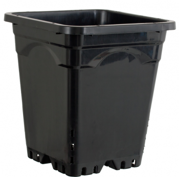 "9""x9"" Square Black Pot, 10"" Tall, case of 24"