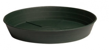 "Green Premium Saucer 8"", pack of 25"