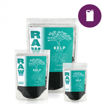 RAW Kelp - 8 oz