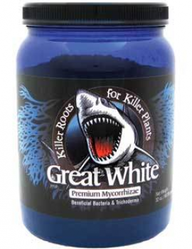 Great White 32 oz.