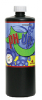 pH UP, 1 lt