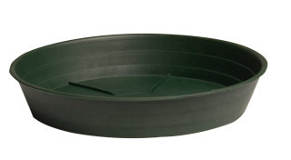"Green Premium Saucer 14"", pack of 10"