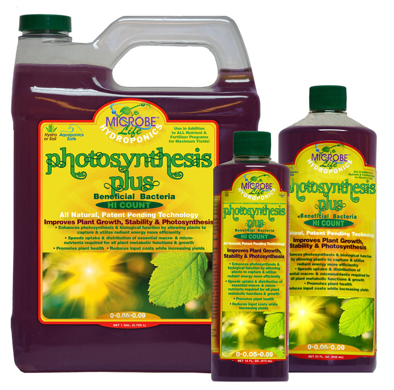 Photosynthesis Plus Gal