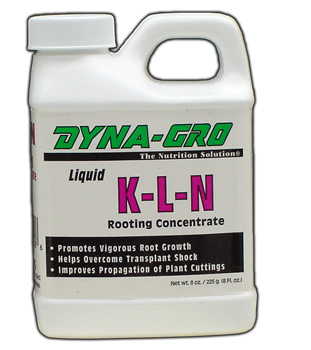 KLN Concentrate. 8 fl oz